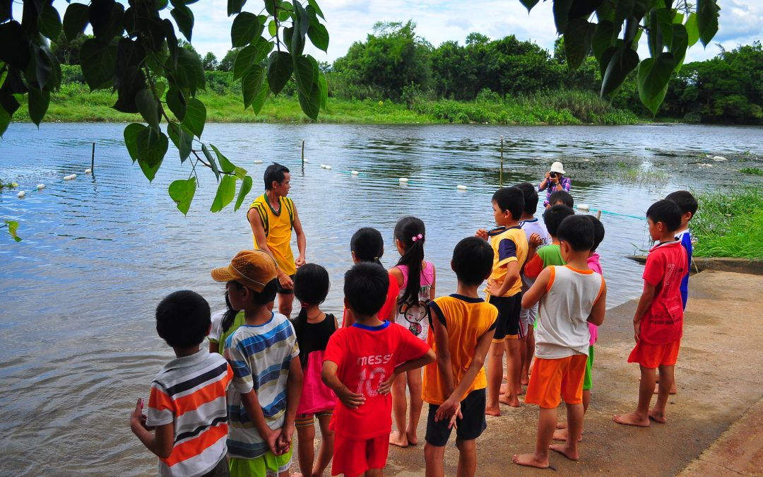 Teaching swimming in Hue